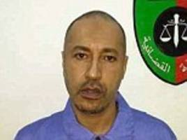 Colonel Gadhafi's son returned to Libya to face corruption charges